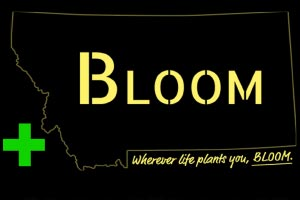 Bloom Montana - Libby Montana Riverfront Blues Festival